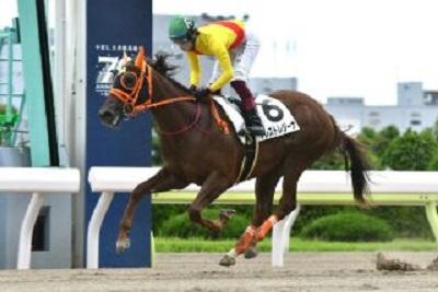 プレストレジーナ号が新馬